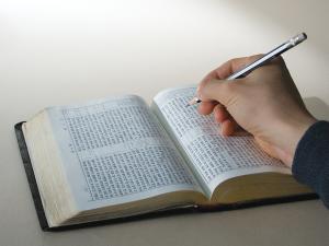 bible study_s